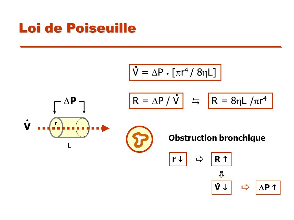 Loi de Poiseuille V = DP • [pr4 / 8L] DP V R = DP / V  R = 8L /pr4
